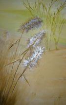 Spanish Landscapes Grasses