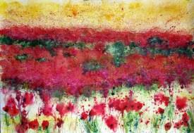 Spanish Landscape of Poppies