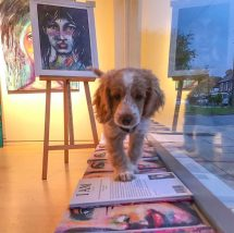 Puppies and Art Exhibitions