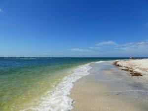 Paradise Coast