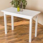 Tisch 100x50