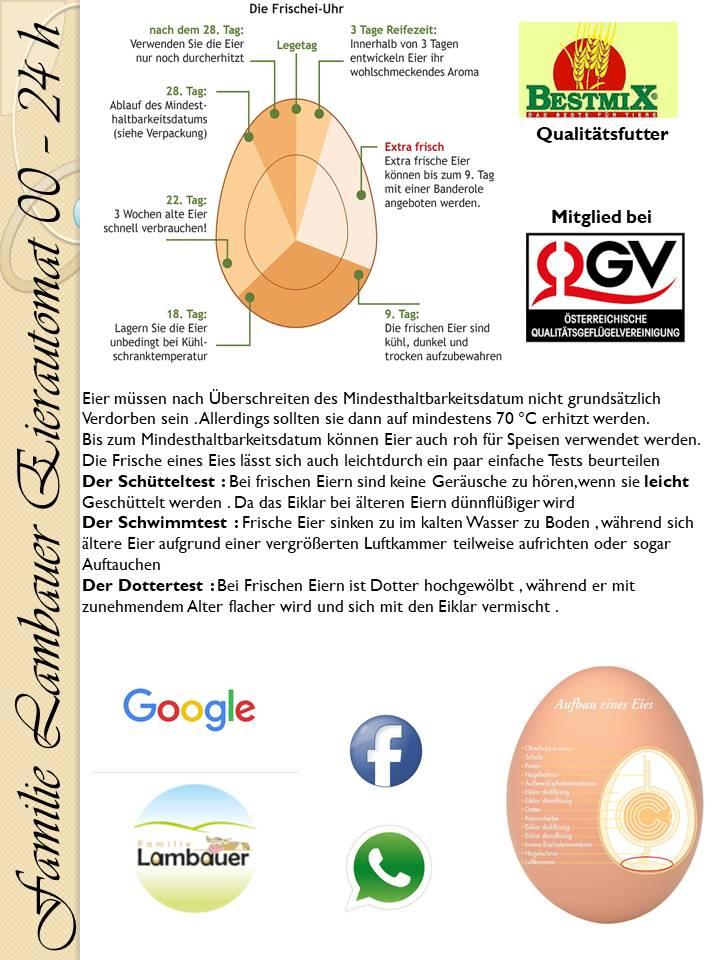 Tipps rund ums Ei