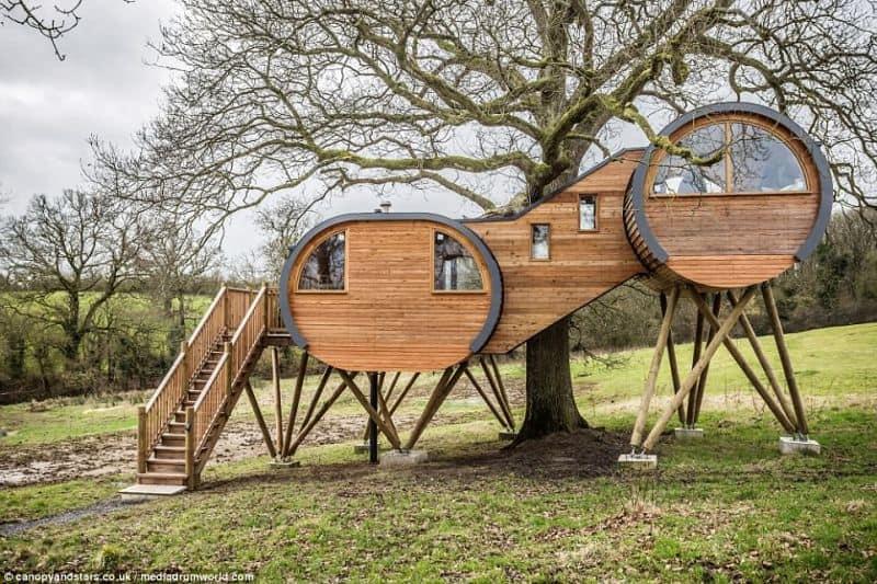 casa in copaci