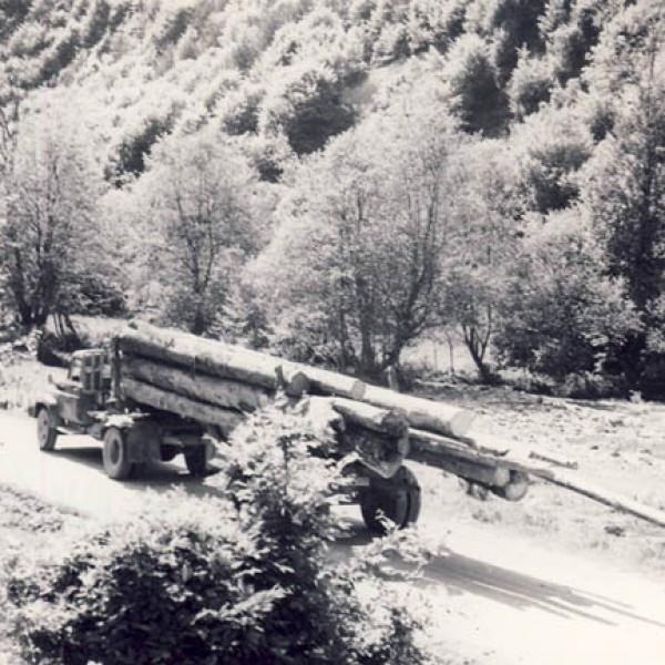 Transport rutier de masa lemnoasa inainte de '89 Promovare