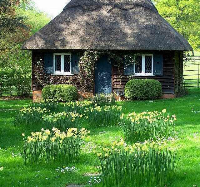 casa de lemn traditionala