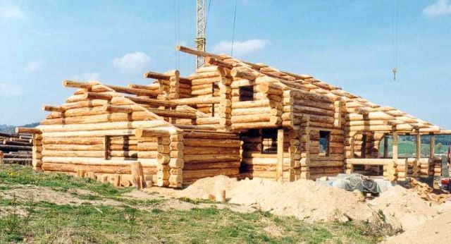 constructia unei cabane de busteni
