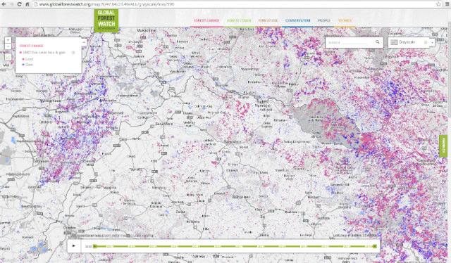 harta padurilor