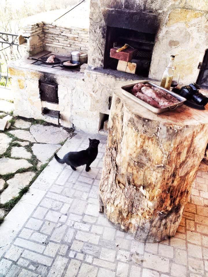 grătar pisica și bustean