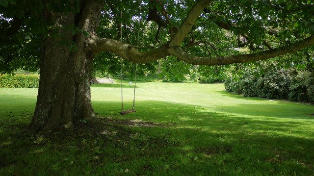 leagan din lemn atarnat de copac pentru copii