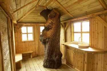 casa cu copaci în interiorul constructiei