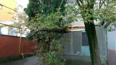 furtuna in Baia Mare