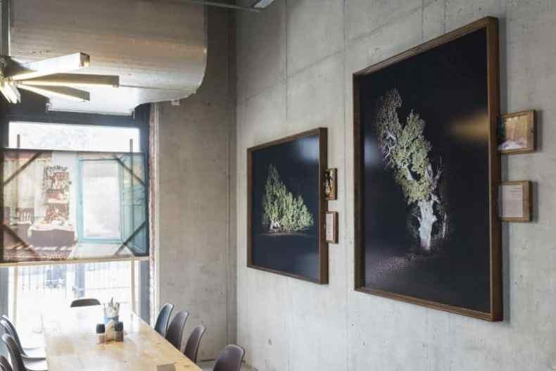 Arbori bătrâni - Florin Ghenade cu rame din frasin fabricate de Ionut Dragnea - portret de tâmplar