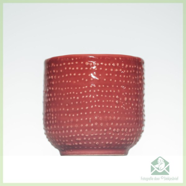 red hat redhat plantenpot bloempot sierpot 6 cm