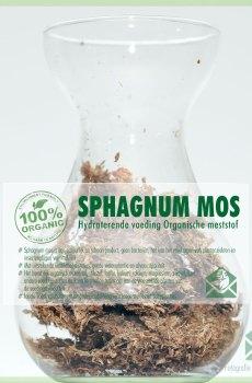 Sphagnum mos bodembedekking vers veenmos kopen