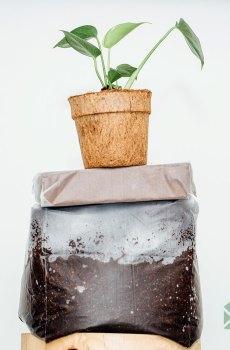 Kokos stek- en zaaigrond - cocopeat blokjes - 10L kopen