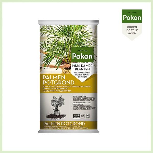Pokon philodendron palm potgrond