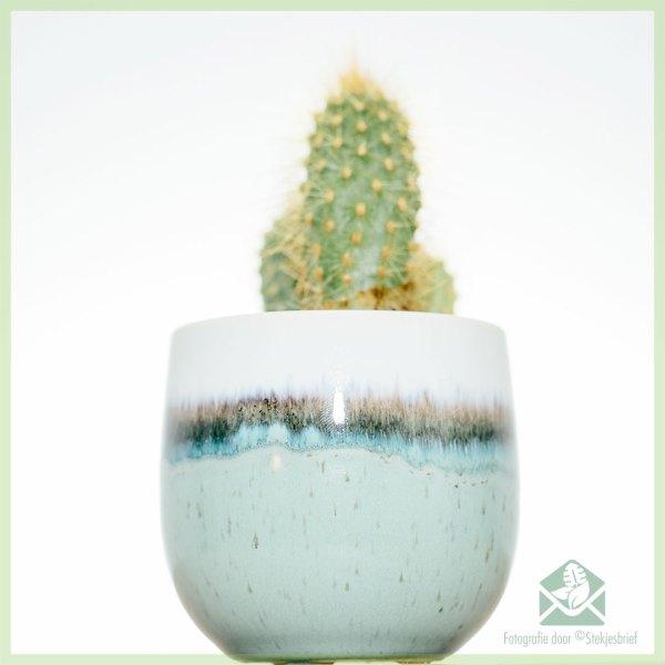 Finnish Green plantenpot bloempot sierpot kopen