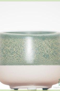 Lyca bloempot sierpot 6 cm