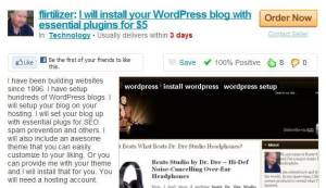 fiverr outsource guide - wordpress setup installation