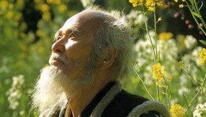 fukuoka masanobu