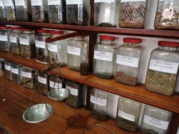 diverse Kräuter für die Medizin