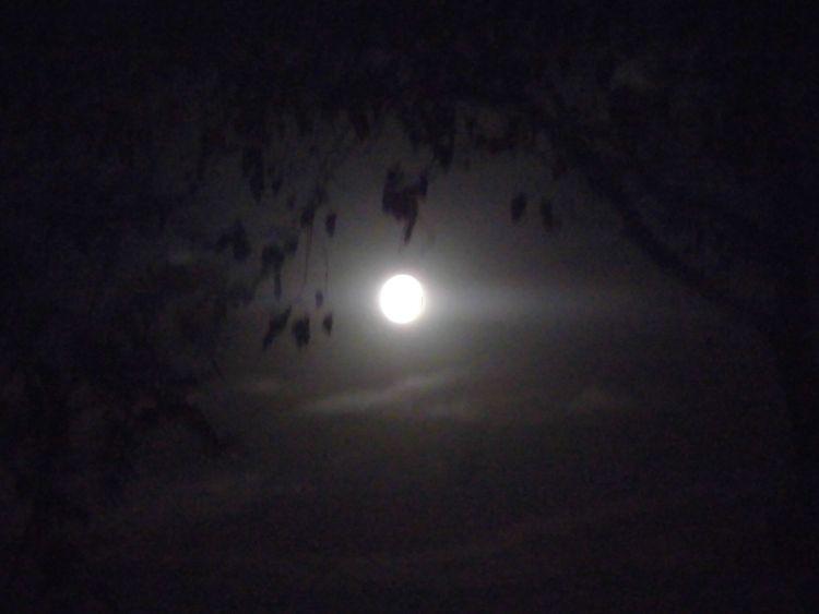 shining full moon