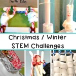 Christmas Winter Stem Challenges
