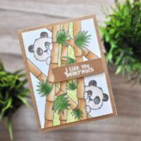 Zuckersüße Pandas von Gerda Steiner