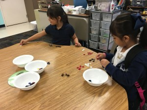Students sorting buttons by colors