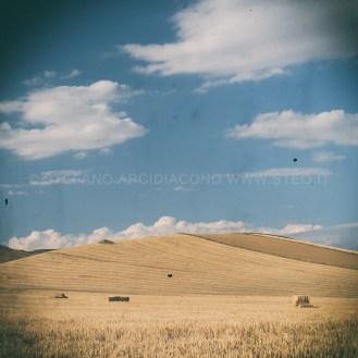 Monti di grano