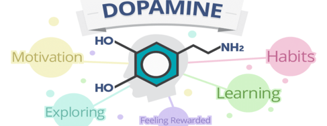 Dopamine molecule and its brain effects