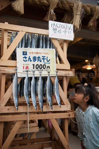 Poissons d'avril - Meiji jingu - Ise - Japon