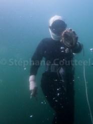 Remontee en surface avec une abalone - Osatsu