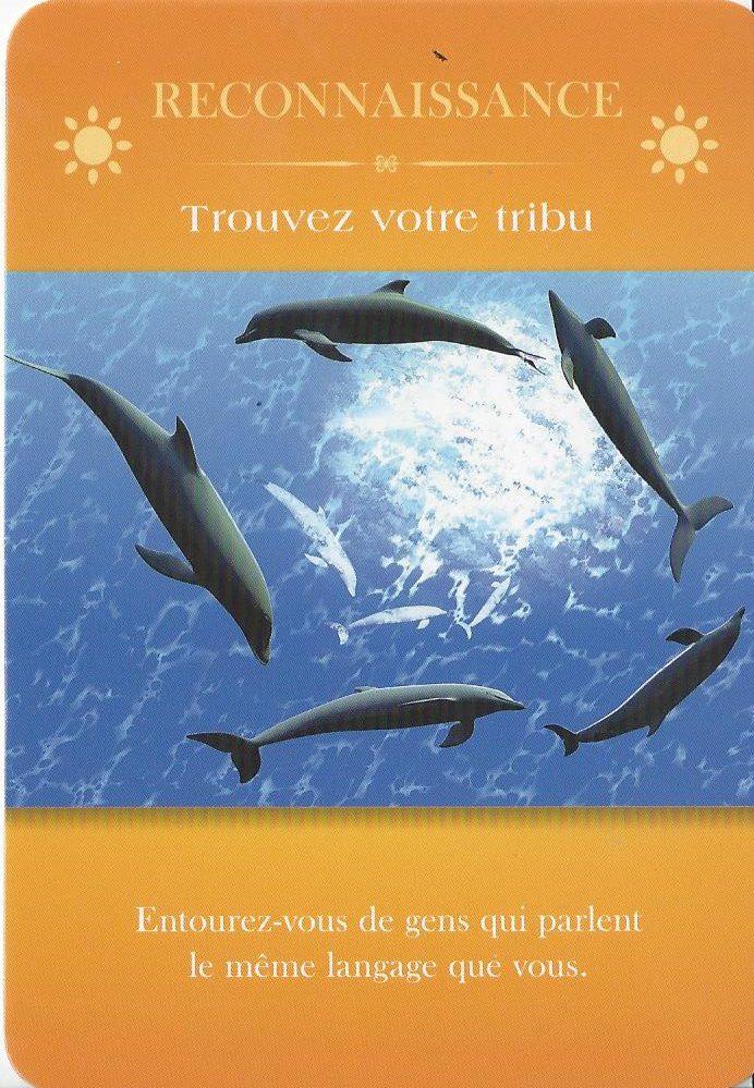 Cartes d'inspiration - Aimer sa Vie - L'art de vibrer à son plein potentiel - Marc Babin et Sylvie Goudreau