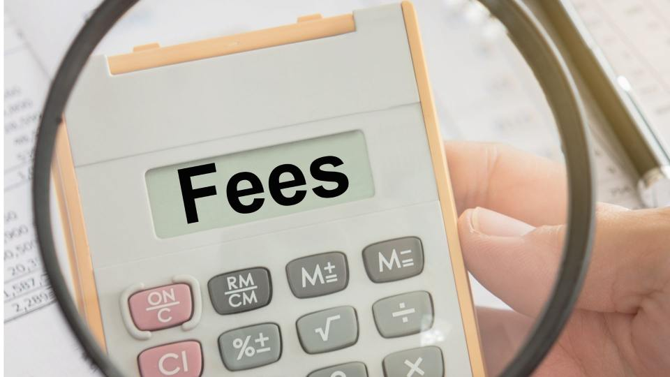 coaching fees