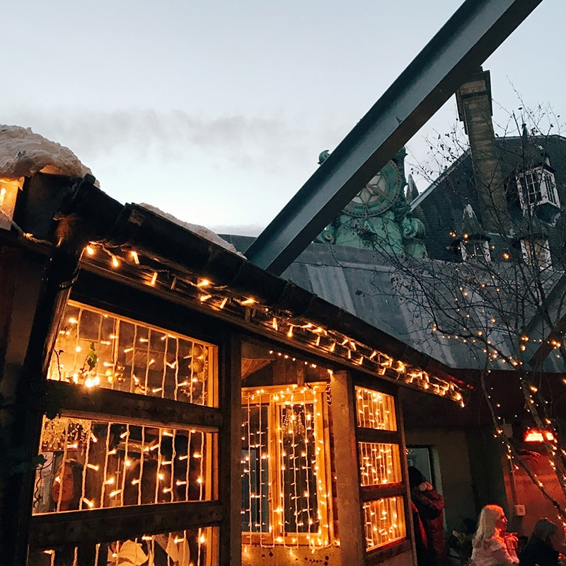 Winter grotto at the Botanist