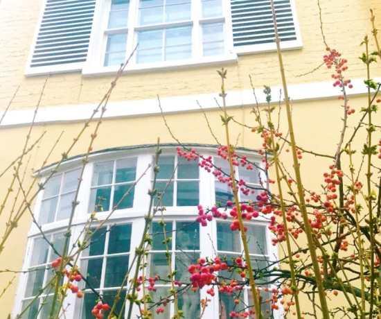 Colourful London houses