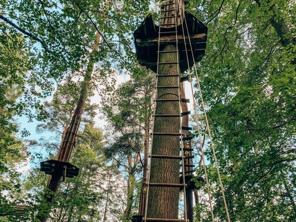 Go Ape Treetop Challenge at Matfen Hall