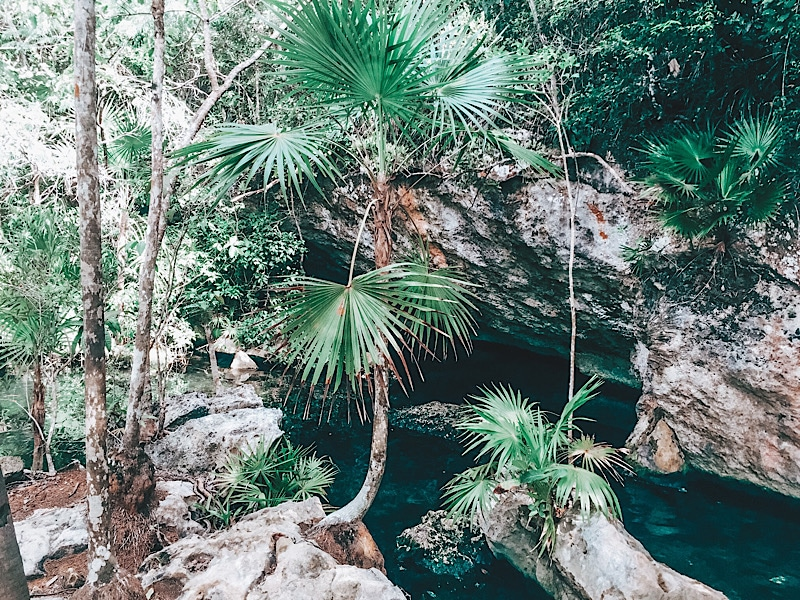 Tulum cenotes