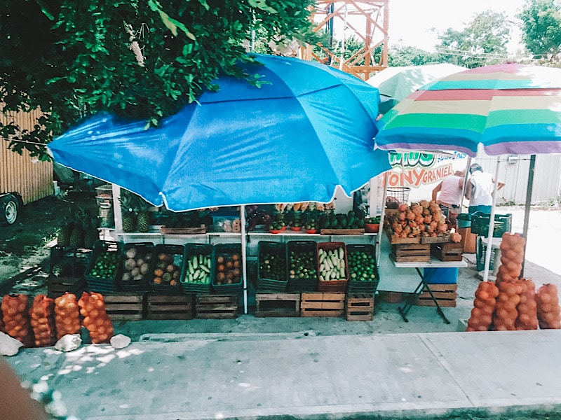 fruit stall mexico