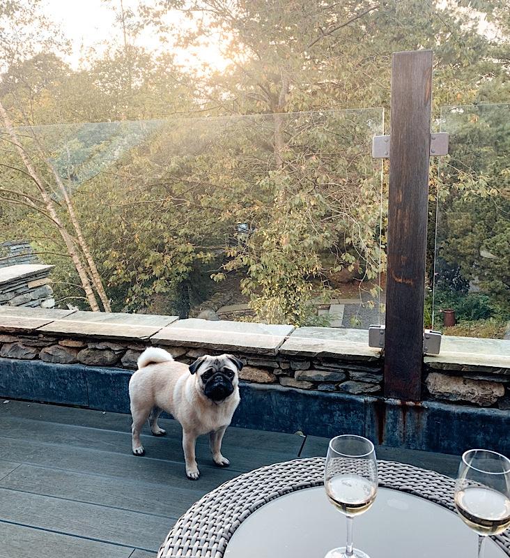 Dog friendly cottage Lake District