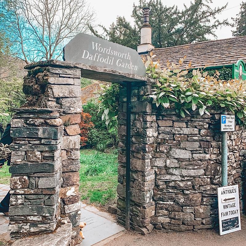 Wordsworth daffodil garden