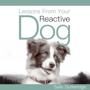 Lessons From Your Reactive Dog By Sally Gutteridge Audiobook Narrated by Stephanie Murphy