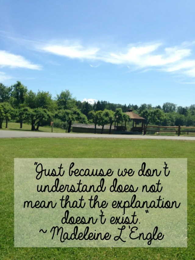 """Just because we don't understand does not mean that the explanation doesn't exist."" ~ Madeleine L'Engle // stephanieorefice.net"