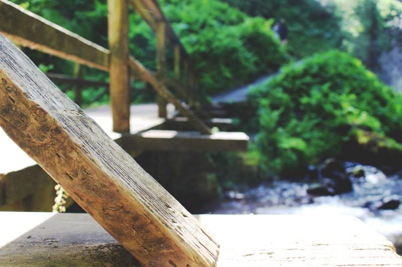 Latourell Falls, Columbia River Gorge // Oregon // stephanieorefice.net