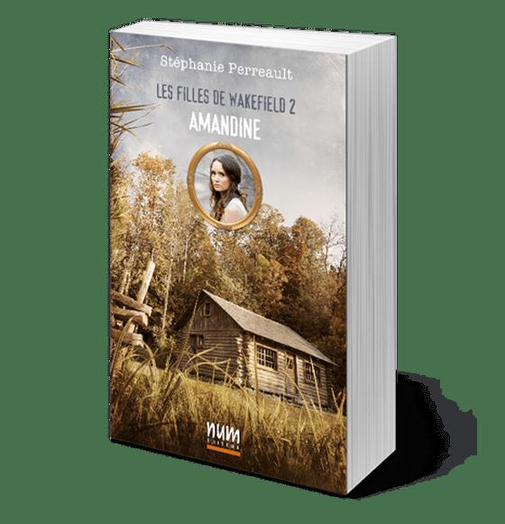 L'héritage de Nazareth par Stéphanie Perreault et Dominique Simon