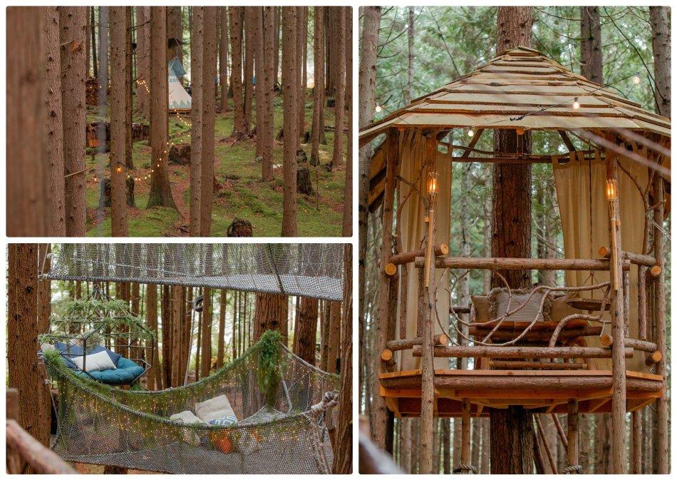 2021 05 22 0058 950x673 The Emerald Forest Elopement | Alicia & Glen