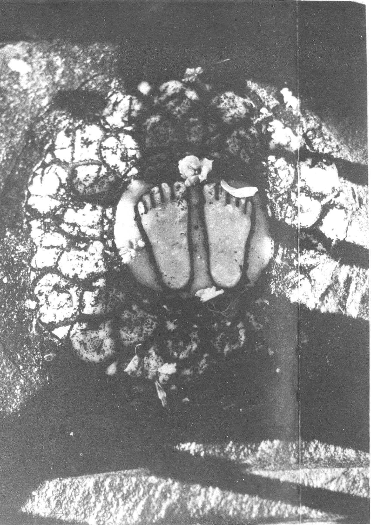 Vishus Feet in Humayun Tomb