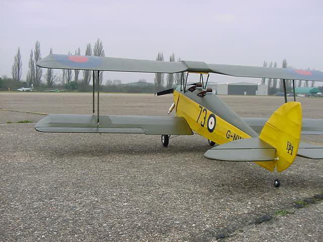D82 tigermoth 10