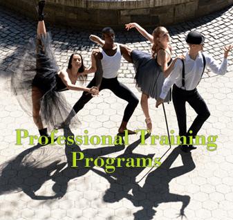 Professional Training Programs